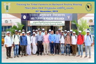 Training to Tribal Farmers Adilabad District